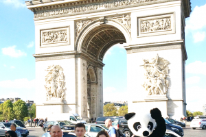 Campagne de street marketing... les pandas envahissent Paris !