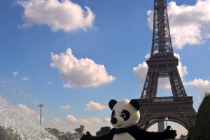 Street marketing campaign: pandas everywhere in Paris !