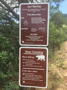 Famtrip - Big Bend National Park - Texas